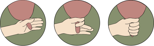 """Illustration des """"Fausten"""" beim Handmelken."""
